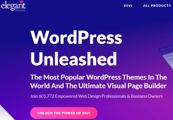 Divi theme download - www.elegantthemes.com