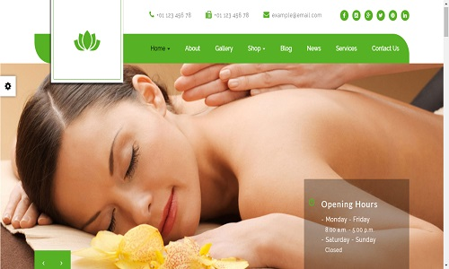 Suko Spa Salon Wordpress Theme
